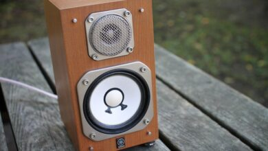 Photo of Factors to Consider When Buying a HiFi Speaker